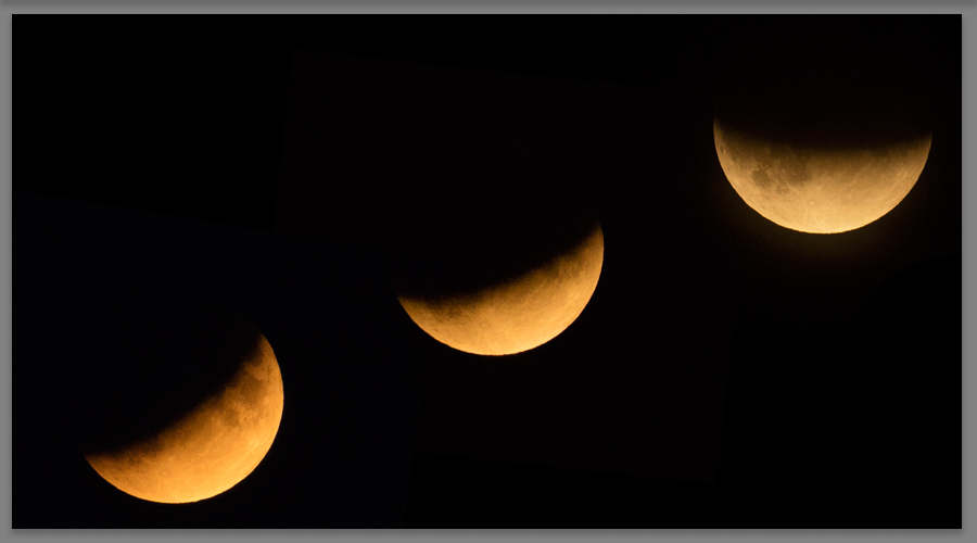 Find out more - Half Blood Moon Eclipse 2019